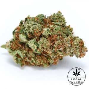 Blue Jo - Legal Weed - Cannabis Light