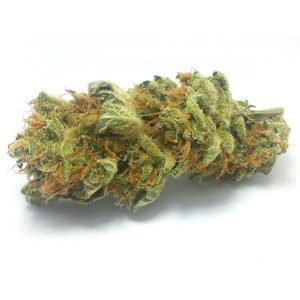 CHEESE – California Hemp | JUSTWEEDBARI