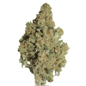 OG KUSH – Weed Rush | JUSTWEEDBARI