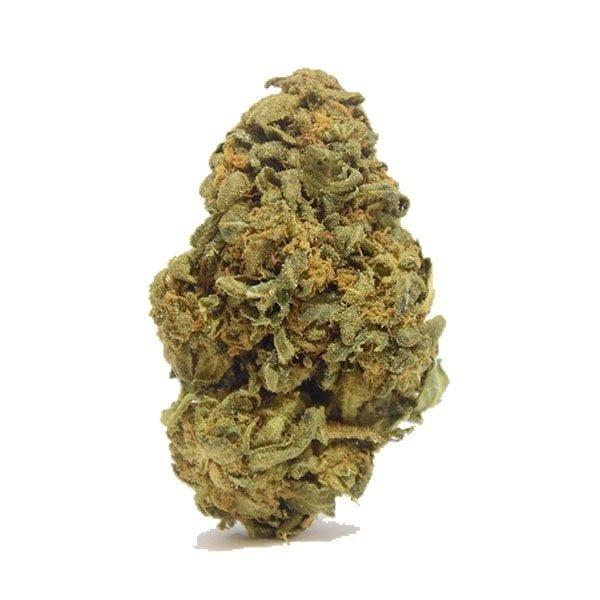 ANGRY BULL – Weed Rush