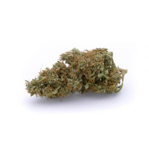 Lemongrass Cannabis Light - Bear Bush Selection