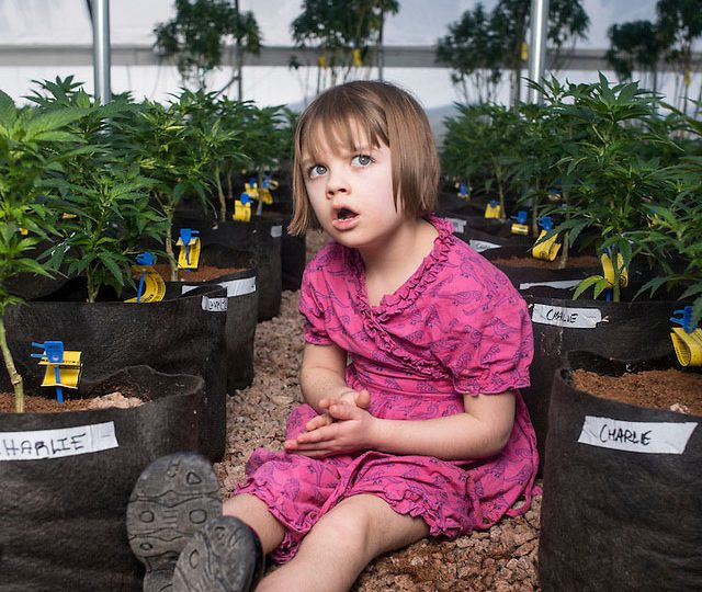 Charlotte, la bimba che aiutò a conoscere la cannabis medica, morta a 13 anni per Covid-19