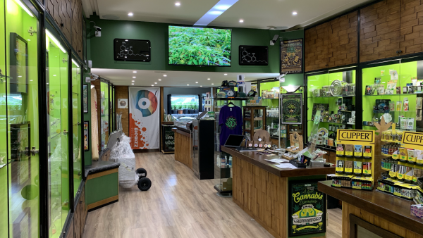 Cannabis Dispensary Shop Bari Italia - BEAR BUSH