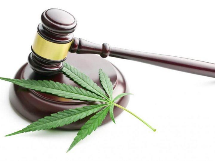 Legge Italiana sulla Marijuana Cannabis Light