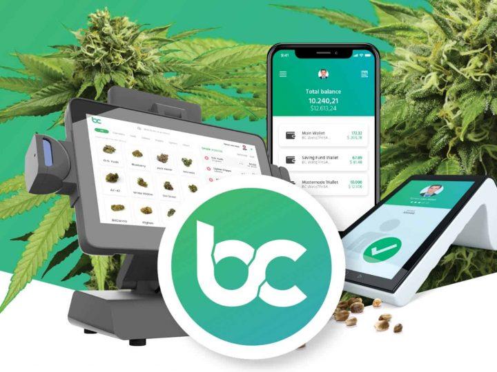 La Moneta Della Cannabis è arrivata: BitCanna la blockchain per la marijuana
