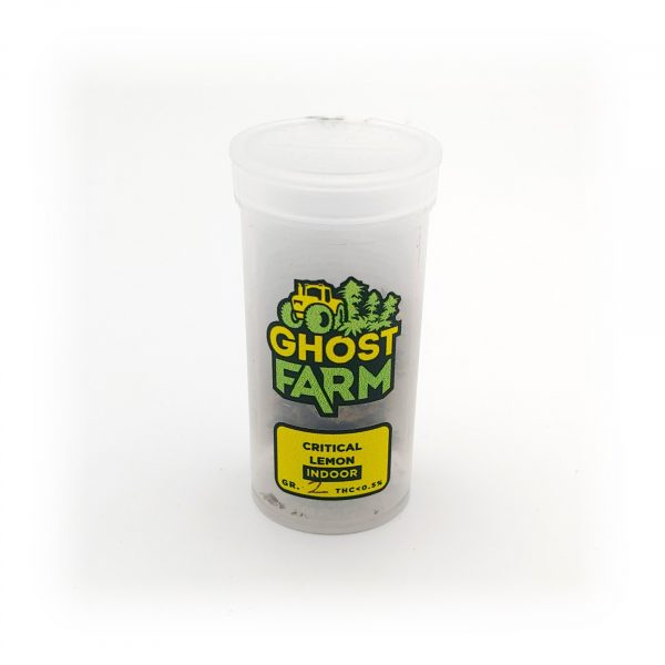 critical-lemon-1-ghost-farm-bear-bush-botanical-collective