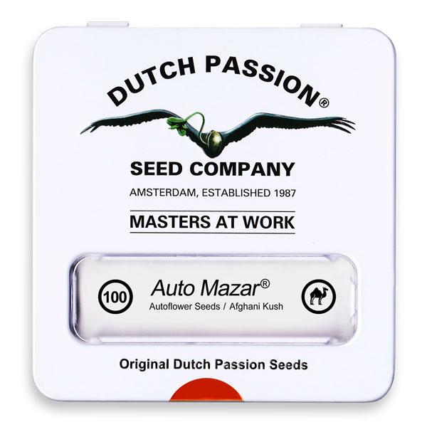 Auto Mazar Dutch Passion 013 - Semi CBD Seeds