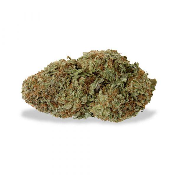 Gorilla Glue - Weedzard Bear Bush - Cannabis Light