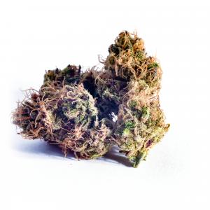 Purple-fruit-ralashlab-bearbush