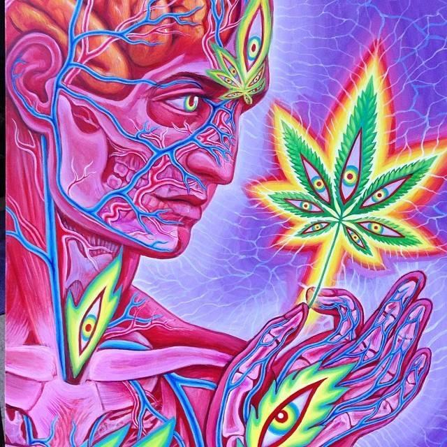 Cannabis Sutra del pittore Alex Grey