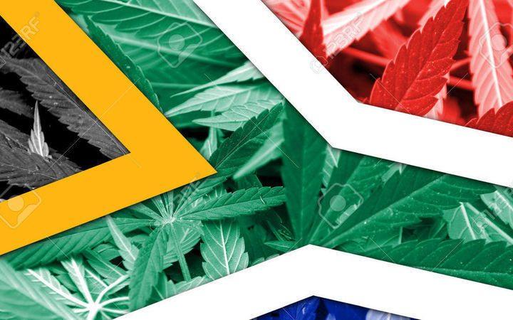 Il modello dei Cannabis Social Club in Sudafrica