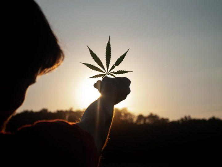 Chi rallenta la legalizzazione in Italia